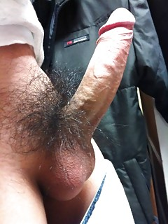 Hairy Gay Cock Pics
